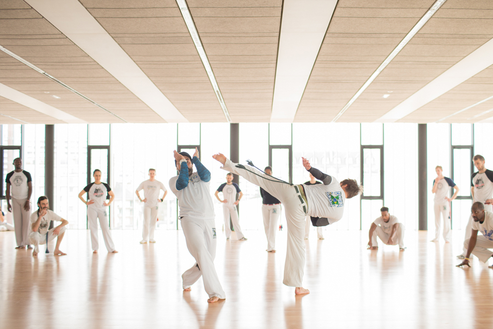 capoeira_arts_et_danse