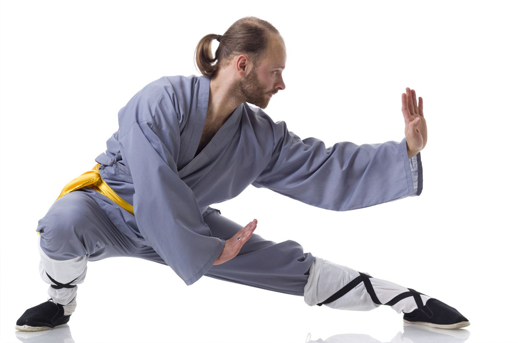 cours_kung_fu_fontenay_aux_roses